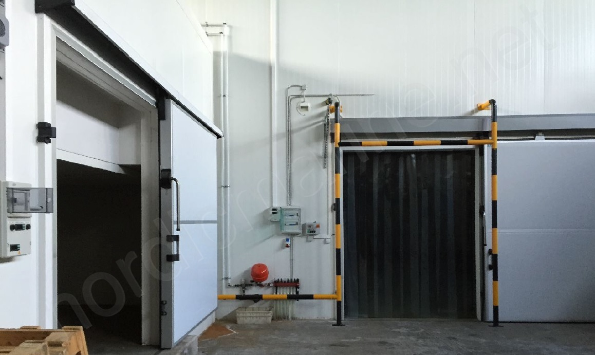 Cold storage with freezing capacity
