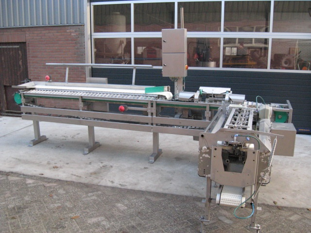 Baader 35 - Filleting line for pelagic with roe removal device